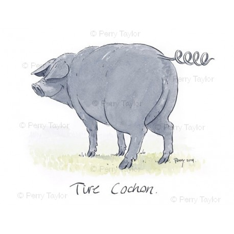 Tire Cochon Tail