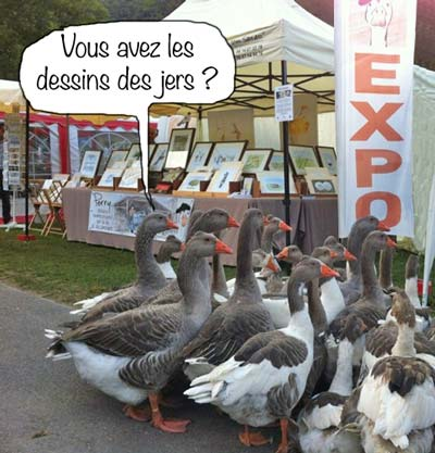 Loudenvielle geese