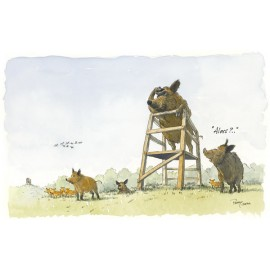 Wild boar lookout