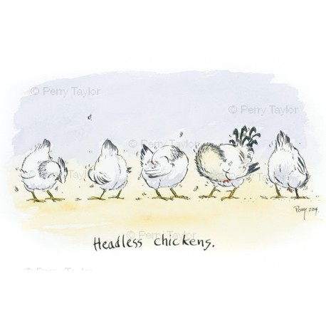 Headless Chickens